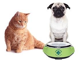 Greencross Pet Obesity