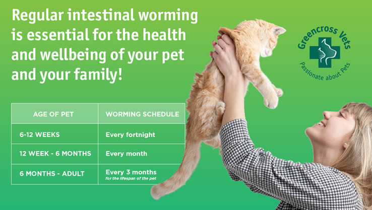 Dog and cat worming chart