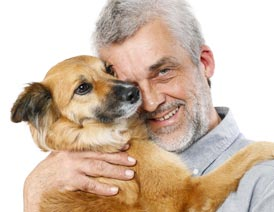 Aging dog with owner