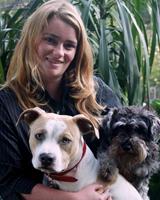 Delta Dog Training Salisbury