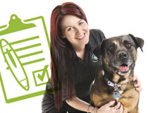 Greencross Vets Nurse Jobs