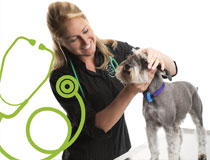 Greencross Vets Positions Vacant
