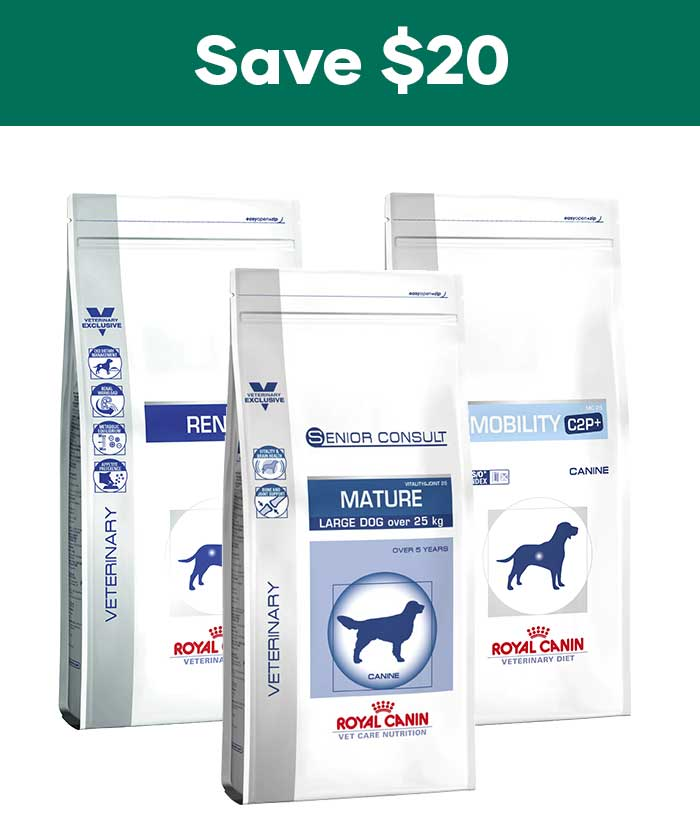 Royal Canin winter promotion