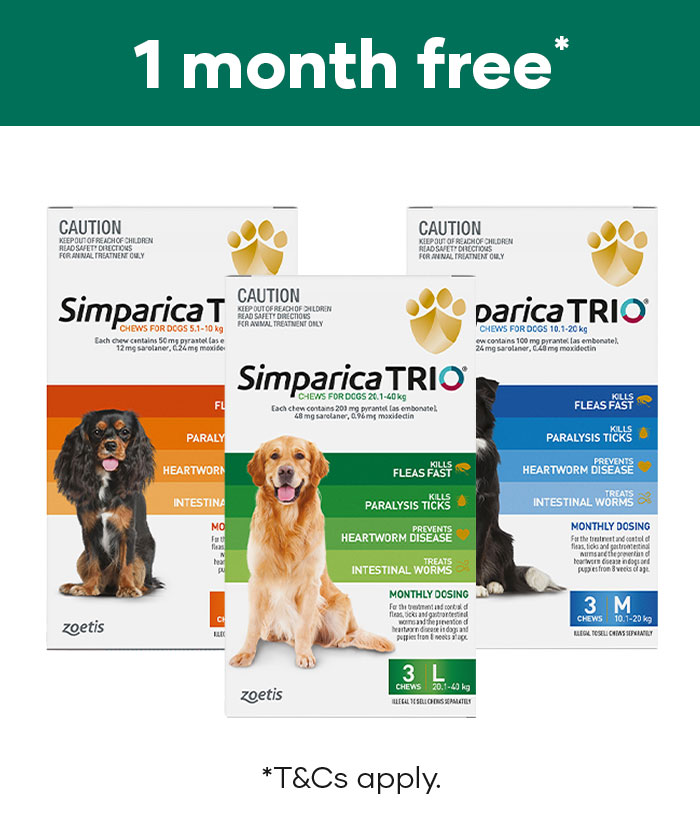 Get 1 month free of Simparica Trio with a 3 pack purchase